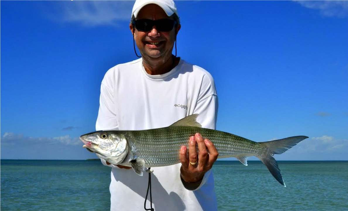 Miami fishing report capt mo fishing guides miami for Fishing report miami