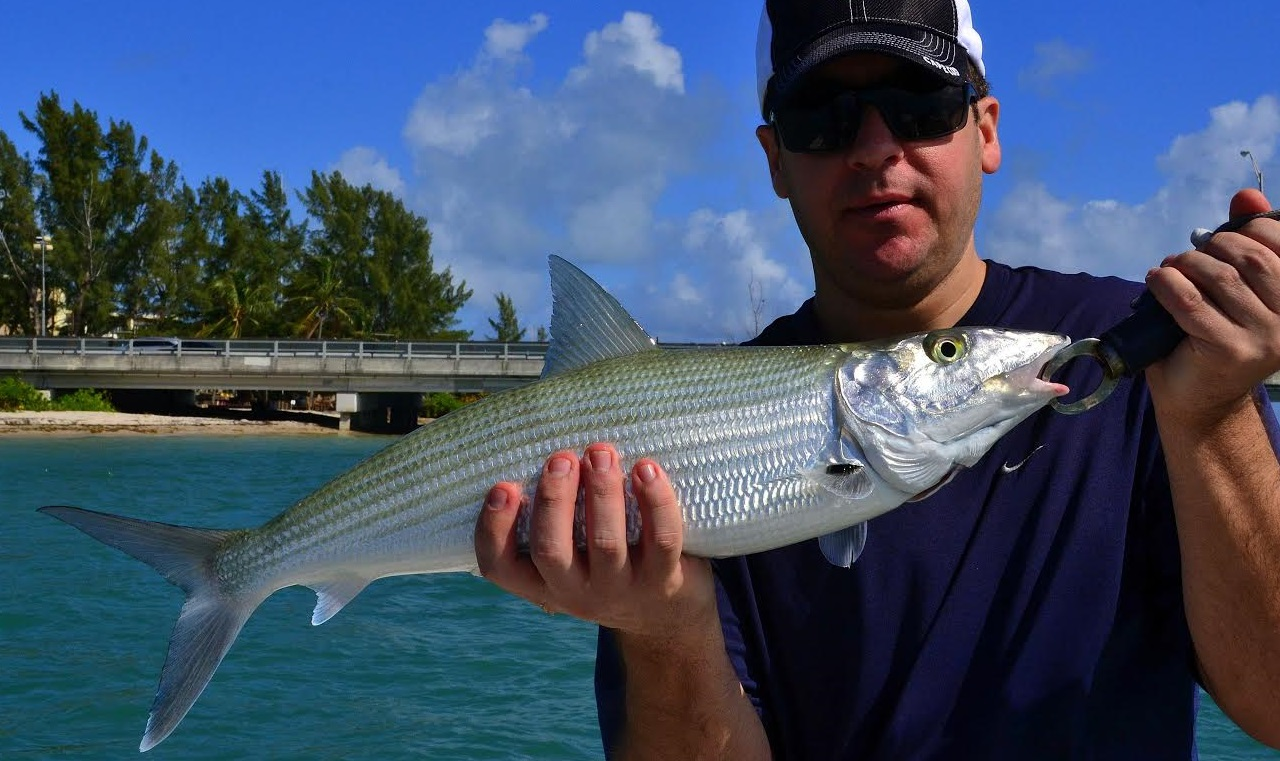 Miami fishing guides report 2 1 14 fishing guides miami for Miami fishing guides